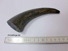 Büffel Horn 13-15cm  Ganze Hornspitze Rohhorn Wasserbüffelhorn Hornstück