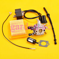 Carburetor IGNITION COIL For Stihl FS 120 FS 200 FS250 W/ air filter Fuel line