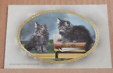 "Postcard Early Embossed Cat Card ""Searching for Knowledge Wildt & Kray 2935"