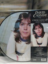 DAVID CASSIDY - I THINK I LOVE YOU Greatest Hits Live Picture Disc Vinyl LP