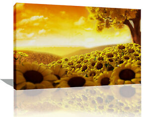 Yellow Tree and Sunflowers in Field CANVAS WALL ART Picture Print