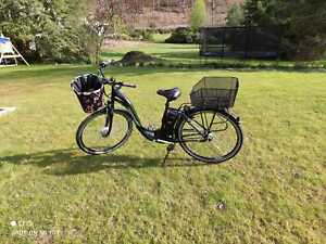 E-bike Didi Thurau Edition