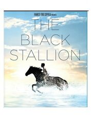 The Black Stallion (DVD) - NEW!!