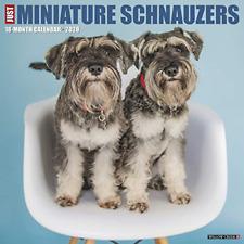 Just Miniature Schnauzers 2020 Wall Calendar Dog Breed Calendar