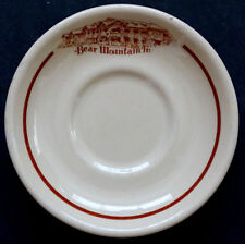 Vintage Bear Mountain Inn Hotel Shenango Restaurant China Cup Saucer New York