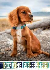 """New listing Personalized Dog Collar Puppy Collar & Toy Breeds Adjustable Cotton 7.5-10"""""""