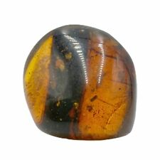 More details for burmese amber fossil with inclusion - cretaceous - fse363 ✔100%genuine✔ukseller