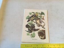 Vintage Wood Duck Audubon Christmas Card