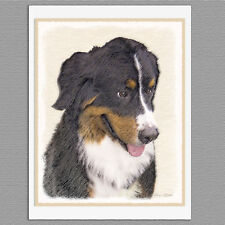 6 Bernese Mountain Dog Blank Art Note Greeting Cards
