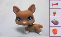 Littlest Pet Shop LPS Rare #949 Brown Corgi Dog + 1 FREE Access 100% Authentic