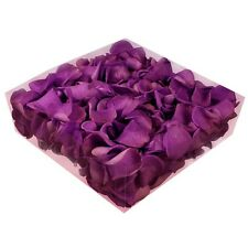 Echte konservierte Rosenblätter - Streukörbchen Hochzeit Tischdeko - violett