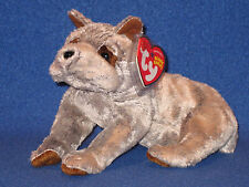 TY TITAN the GREAT DANE BEANIE BABY - MINT with MINT TAG