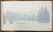 """Dan McCarthy Signed Limited Edition Print #152/600 """"The Call of the Wild"""" 14×24"""