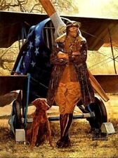 Red, White and Blue by James Dietz Classic Aviation Print 12x15