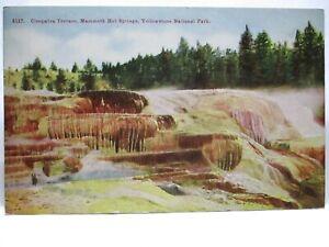 1915 POSTCARD CLEOPATRA TERRACE HOT SPRINGS, YELLOWSTONE NATIONAL PARK BIO UNUSE
