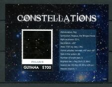 Guyana 2013 MNH Constellations 1v S/S II Pegasus Winged Horse Stars Space Stamps