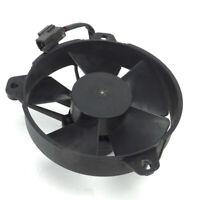 Ventola elettroventola radiatore originale Aprilia Sportcity 125 200 04 08
