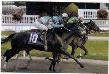 GIACOMO WINNER OF 2005 KENTUCKY DERBY, AFLEET ALEX,CLOSING ARGUMENT POSTCARD