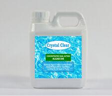 Pool Algaecide - Concentrated Dual Action Low dosage Algae Remover/Preventative