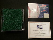 Minnesota Twins World Series Game Used Metrodome Turf n Roof! 1987 World Series