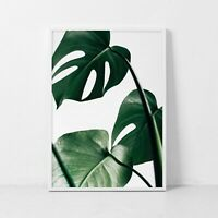 Monstera Leaf Wall Art Print. Great Home Decor. A3 A2 A1 Sizes