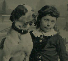 Young Girl Posed With Dog, English Pointer. Excellent Tintype.
