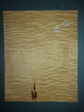 CONSECUTIVE SHEETS OF KARELEAN BIRCH VENEER 22X30CM KB#2 MARQUETRY