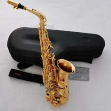 Professional Hand hammered Eb Alto Saxophone Gold Plated Sax Reverse Neck Great
