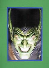 GREEN GOBLIN PRINT PROFESSIONALLY MATTED Alex Ross Spider-Man