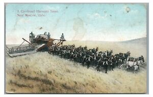 Combined Harvester Scene Team of Mules Horse MOSCOW ID Farming Idaho Postcard