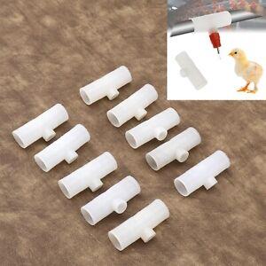 Poultry Pipe Tee Fitting 10pcs Waterer Chicken Drinker Bird 1/8 Inch Threaded