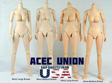 1/6 Female Nude Figure Body Large Breast Pale Skin Tone N001 - U.S.A. SELLER