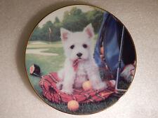 West Highland White Terrier Puppy Plate