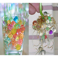 Jelly Magic Water Balls Crystal Pearls Jelly Gel Bead For Refill Grow Plant Hot