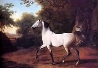 Oil painting jacques laurent agasse - a grey arab stallion in a wooded landscape
