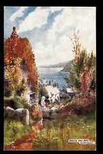 Tuck cottage view above the Bay Clovelly Uk postcard