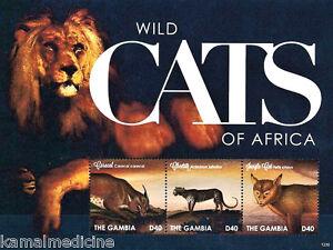Gambia 2012 MNH SS, Wild Animals,Wildcats Lion,Cheetah, Jungle Fowl Caracal