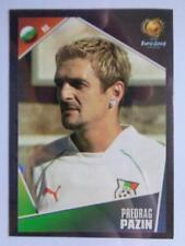 Panini Euro 2004 - Predrag Pazin (Bulgaria) #207