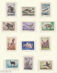 cc33 - Romania stamps, 1956