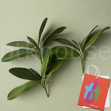 3 x Artificial Moth Orchid Leaves Foliage Bush Potted Plant Arrangement (GN)