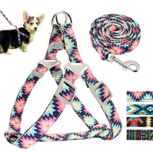 Printing Step In Dog Harness and Walking Lead set Adjustable Strap Small Medium