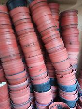 Lote 100 macetas usadas de 8'5 cms para cactus y suculentas
