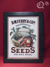 D.M.FERRY & Co. SEEDs for Sale Here