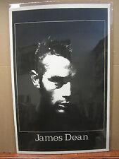 vintage James Dean original Poster black light   4339