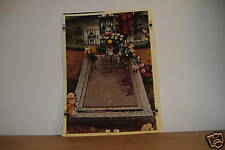 ~COLOR PHOTO OF ELVIS' GRAVE~10 X 14 INCH~
