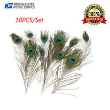 10pcs Lot Real Natural Peacock EYE Feathers 10-11.8 Inch Wedding Party Decor US