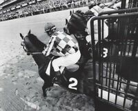 SECRETARIAT & RON TURCOTTE - ORIGINAL 1973 BELMONT STAKES STARTING GATE PHOTO!