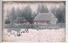 (106472) AK Elbingerode, Gruss vom Hartenberg, 1902