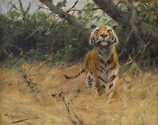 Kuhnert Wilhelm Tiger On The Watch Canvas 16 x 20   #3409