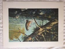 """1989 GEORGE LUTHER SCHELLING """" WILDWATER BROOK TROUT"""" SIGNED PRINT 15 of 600"""